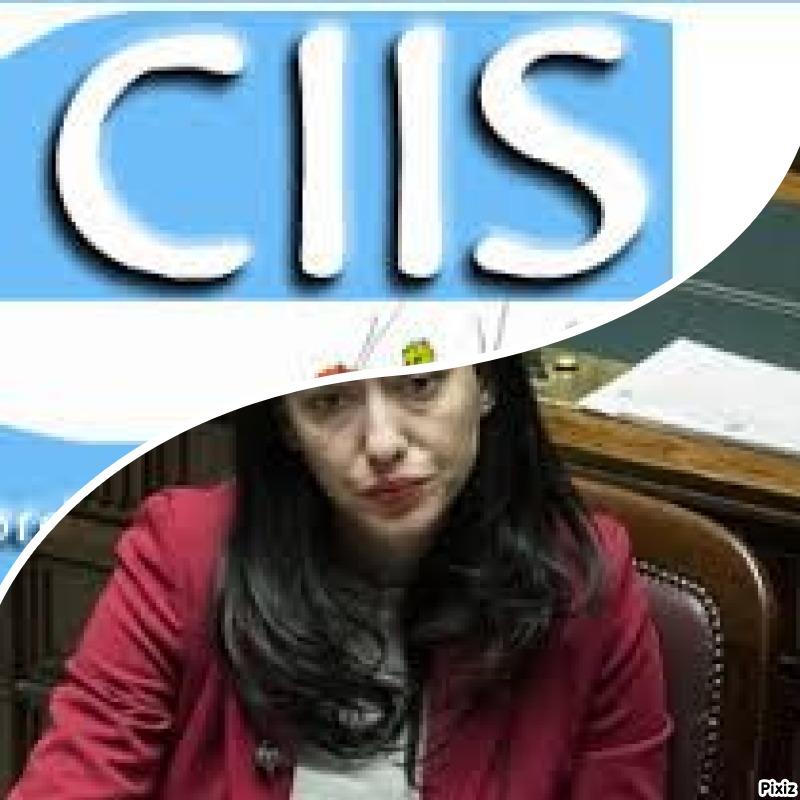Scrive il CIIS (Coordinamento Italiano Insegnanti di Sostegno)