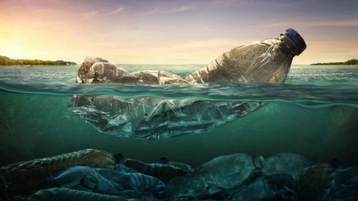 Ambiente: il danno più grande è la noncuranza