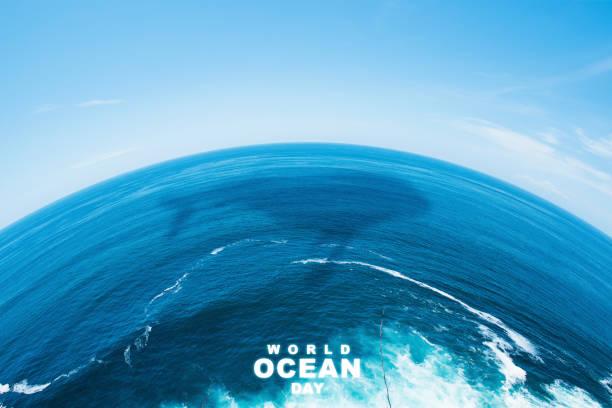 Il Coordinamento Nazionale dei Docenti della disciplina dei Diritti Umani, in occasione della Giornata internazionale degli oceani (World Oceans Day), 8 giugno, intende sottolineare la situazione critica in cui versano tali risorse naturali