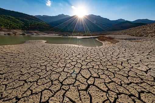 Coordinamento Nazionale Docenti della disciplina dei Diritti Umani, World Day to Combat Desertification and Drought 2021